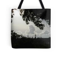 Sunset in Monochrome Tote Bag