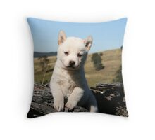 Dingo puppies  # 1 Throw Pillow