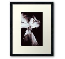 Showgirl Framed Print