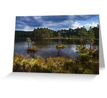 Loch an Eilean, in Rothiemurchus Forest Greeting Card