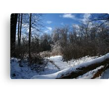 Ice at governor Dick Canvas Print