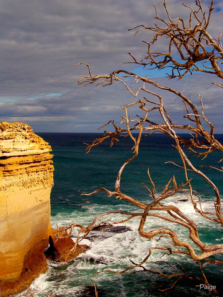 The Shipwreck Coast by Paige