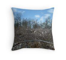 ice thorns Throw Pillow