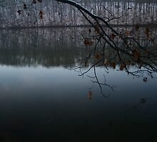 Snowy Reflections by jason kale