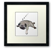 Sleeping Pug Framed Print