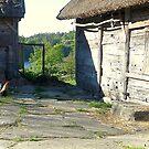 Old Farm by HELUA