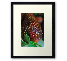 Strawberry Close Up Framed Print