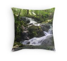 Waterfalls above Millerground, Windermere, Cumbria, English Lake District Throw Pillow