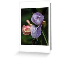 Sweetpeas in the Garden Greeting Card