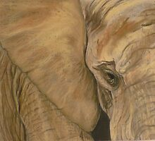 Jo's Elephant by Carol Walker