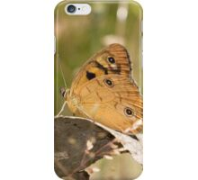 Shouldered Brown Butterfly iPhone Case/Skin