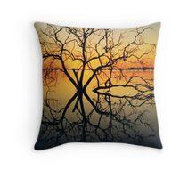 Lady of the Lake! Throw Pillow