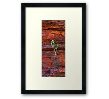 Forces of Nature Framed Print