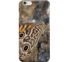 Ringed Xenica Butterfly - Patterns iPhone Case/Skin