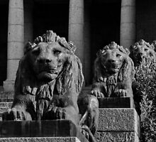 The Guardians by Erika Gouws