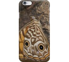 Ringed Xenica Butterfly iPhone Case/Skin
