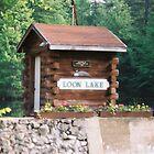 Loon Lake by Deborah Austin