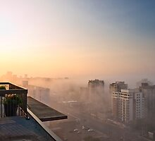 Foggy Morning in Edmonton by Myron Watamaniuk