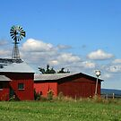 Red Sheds & Windmills by Geno Rugh