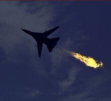F111 - Dump & Burn  by Bev Pascoe