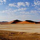 Namib Naukluft Park by Gudrun Eckleben