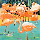 Flamingo's by RDRiccoboni