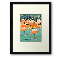 Flamingo's Picture Framed Print