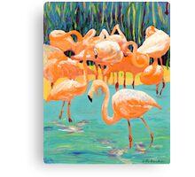 Flamingo's Canvas Print