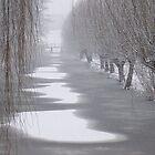 Winter in Gouda by Hans Bax