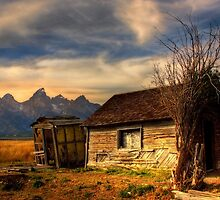 Mormon Row, Tetons National Park, Jackson,  Wyoming, USA. by photosecosse /barbara jones