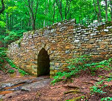 3594 - Poinsett Bridge by Ray Mosteller