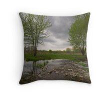 Bolton, MA Landscape Throw Pillow
