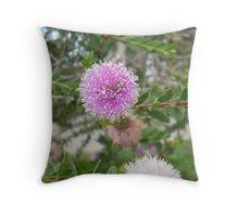 Wattle Plant Throw Pillow