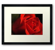 Glowing red Rose Framed Print