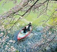 Rowing under the Cherry Blossom by WaterGardens