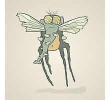 Illustration monster fly with long legs, wings and proboscis Photographic Print