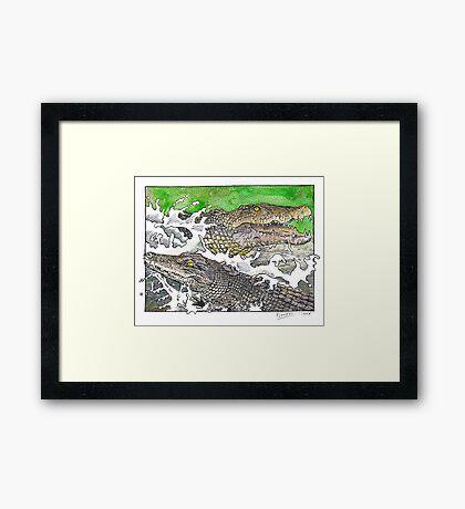 Saltwater crocs Framed Print