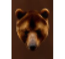 Pixel Brown Bear Photographic Print