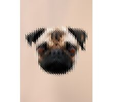 Pixelated Pug Dog Photographic Print