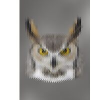 Pixelated Owl Photographic Print