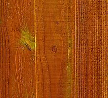 Wood Panel Fence Texture by MarkUK97