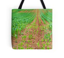 Sweetcorn Crop with New Growth Tote Bag