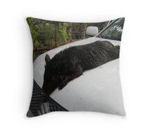 Blackie Throw Pillow