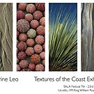 Textures of the Coast Exhibition by catdot