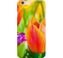 Tulips Enchanting 02 iPhone Case/Skin