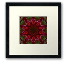 Red Green kaleidoscope 12 Framed Print