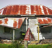 Dilapidated House, Gippsland by Roz McQuillan