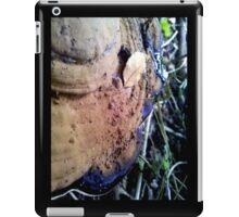Dirty Cap iPad Case/Skin