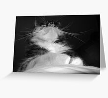 Ruler of the World Greeting Card