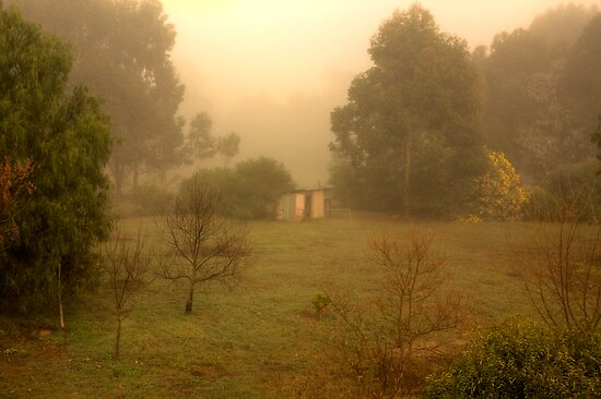 Paddock in Fog by Elaine Teague